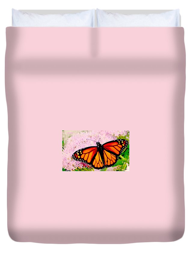 Monarch Duvet Cover featuring the photograph Graphic Monarch by Chris Berry