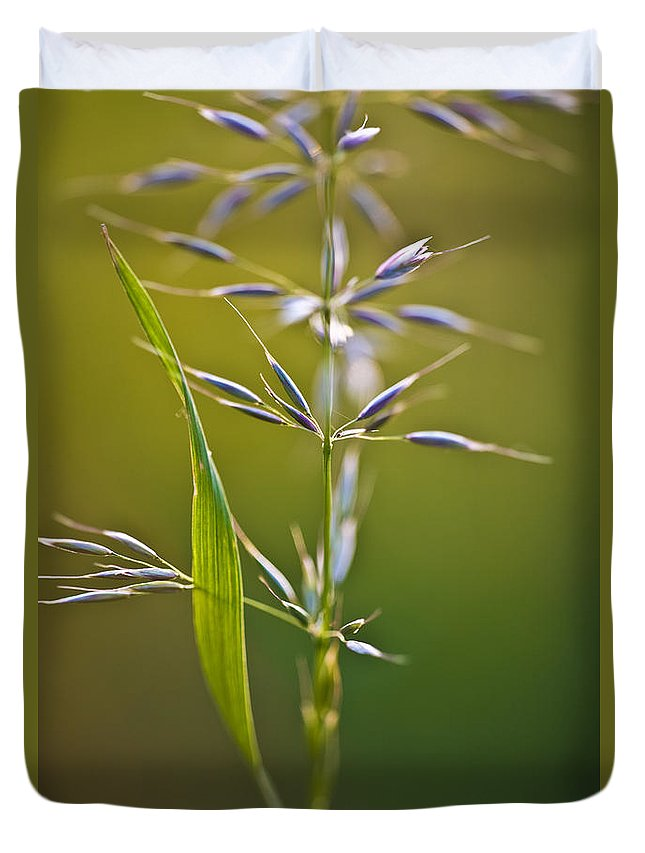Nature Duvet Cover featuring the photograph Grass In Flower by Heiko Koehrer-Wagner