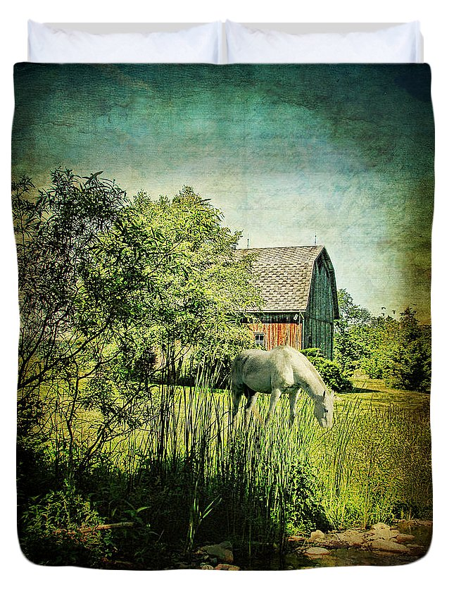 Animal Duvet Cover featuring the digital art Grazin' In The Grass by Lianne Schneider