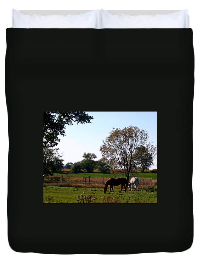 Horses Duvet Cover featuring the photograph Grazing Horses by Kay Novy