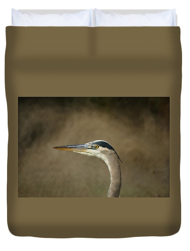 Animals Duvet Cover featuring the photograph Great Blue Heron Profile by Ernie Echols