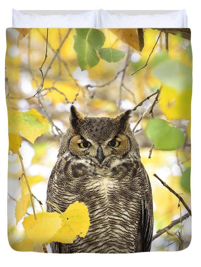 Great Horned Owl Duvet Cover featuring the photograph Great Horned Owl by Saija Lehtonen