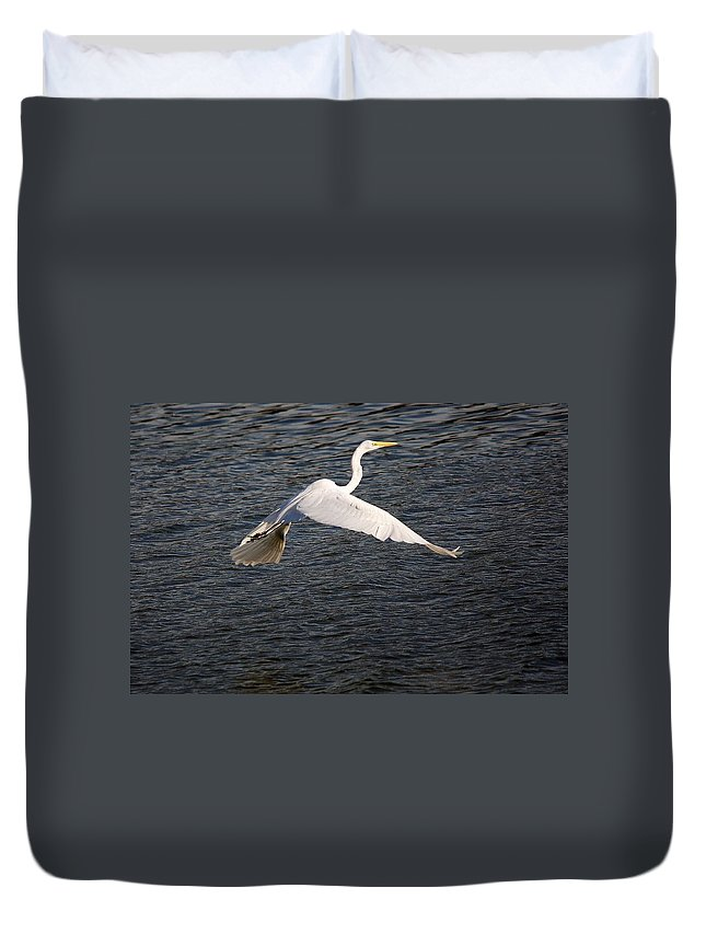 Egret Duvet Cover featuring the photograph Great White Egret Flight Series - 10 by Roy Williams