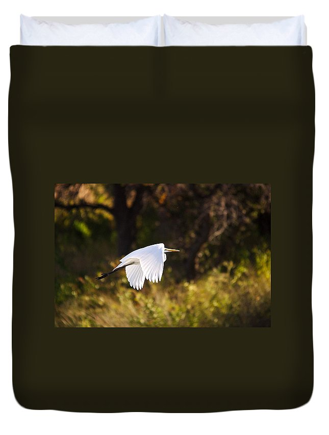 Egret Duvet Cover featuring the photograph Great White Egret Flight Series - 5 by Roy Williams