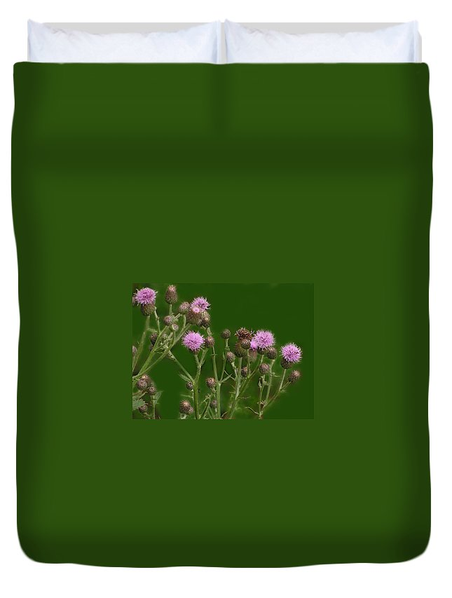 Flower Duvet Cover featuring the photograph Green And Purple by Ian MacDonald