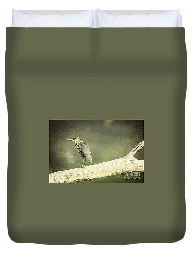 Wildlife Duvet Cover featuring the photograph Green Heron On A Log by Pam Holdsworth