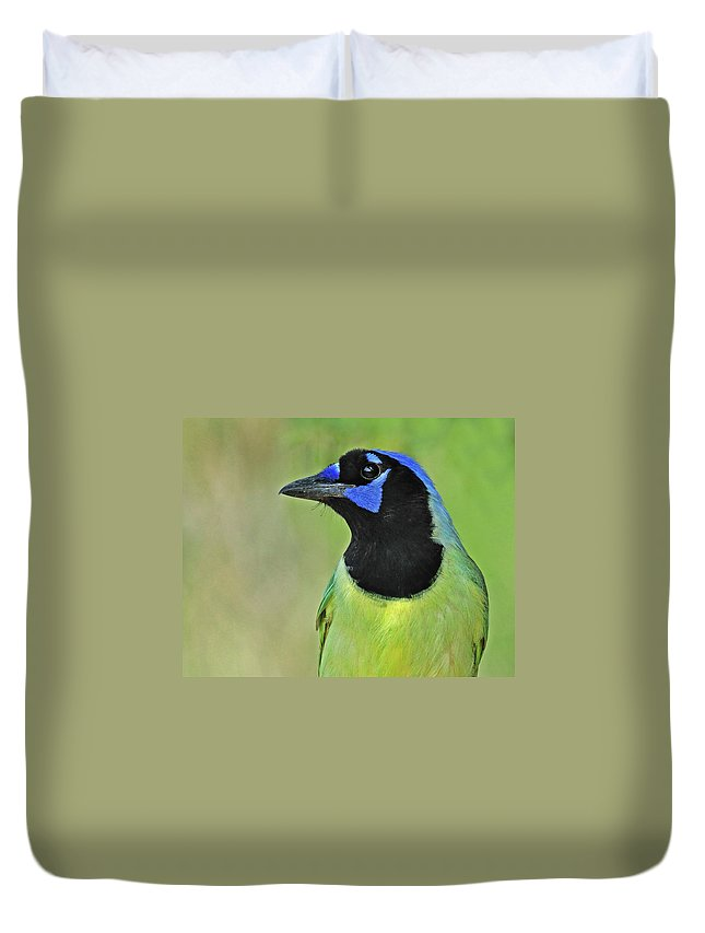 Green Jay Duvet Cover featuring the photograph Green Jay Portrait by Dave Mills