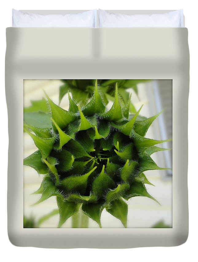 Sunflower Duvet Cover featuring the photograph Green by Shannon Grissom