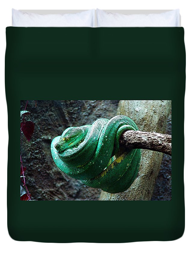 Reptile Duvet Cover featuring the digital art Green Snake by CJ Clark