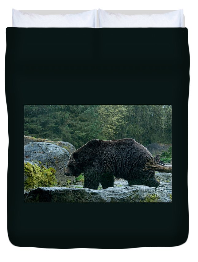Animals Duvet Cover featuring the digital art Grizzly Bear Or Brown Bear by Carol Ailles