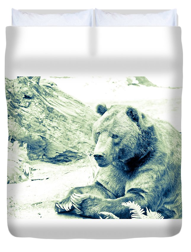 Grizzly Bear Duvet Cover featuring the photograph Grizzly Bear by Steve McKinzie