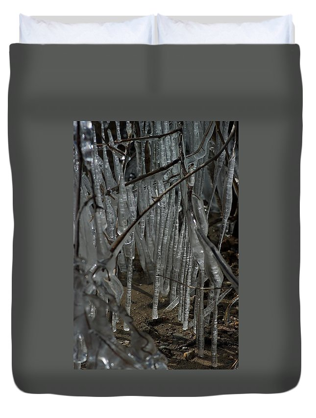 Michigan State University Duvet Cover featuring the photograph Grounded by Joseph Yarbrough