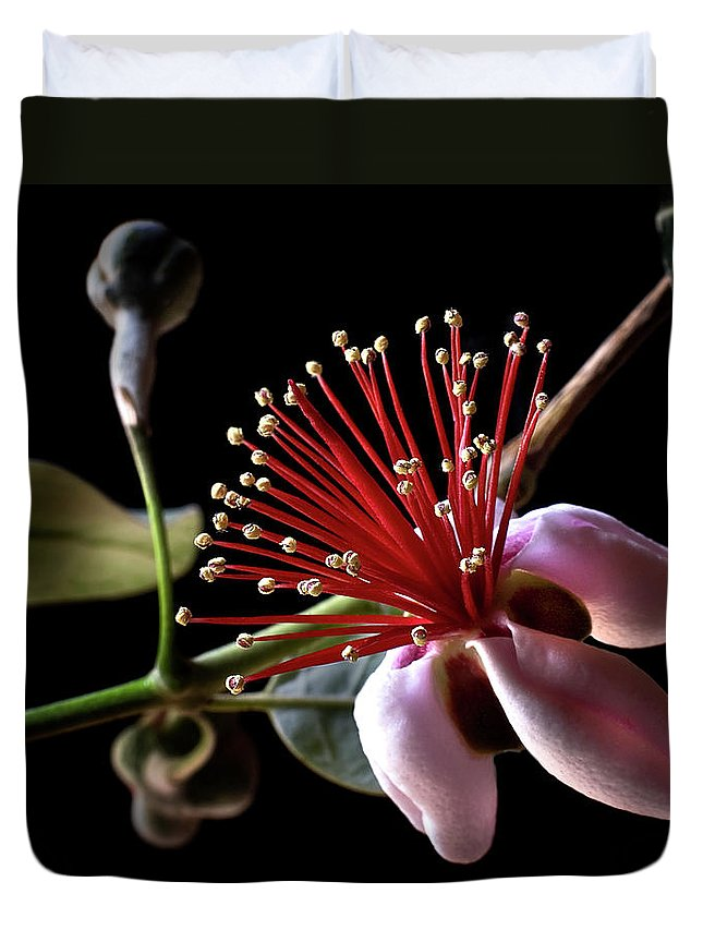Flower Duvet Cover featuring the photograph Guava by Endre Balogh