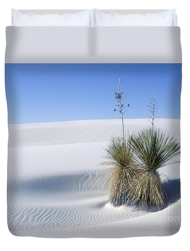 White Sands Duvet Cover featuring the photograph Gypsum Dunes And Yucca by Sandra Bronstein