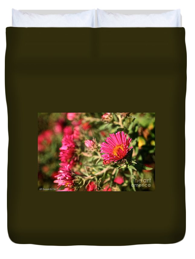 Flower Duvet Cover featuring the photograph Happy Aster by Susan Herber