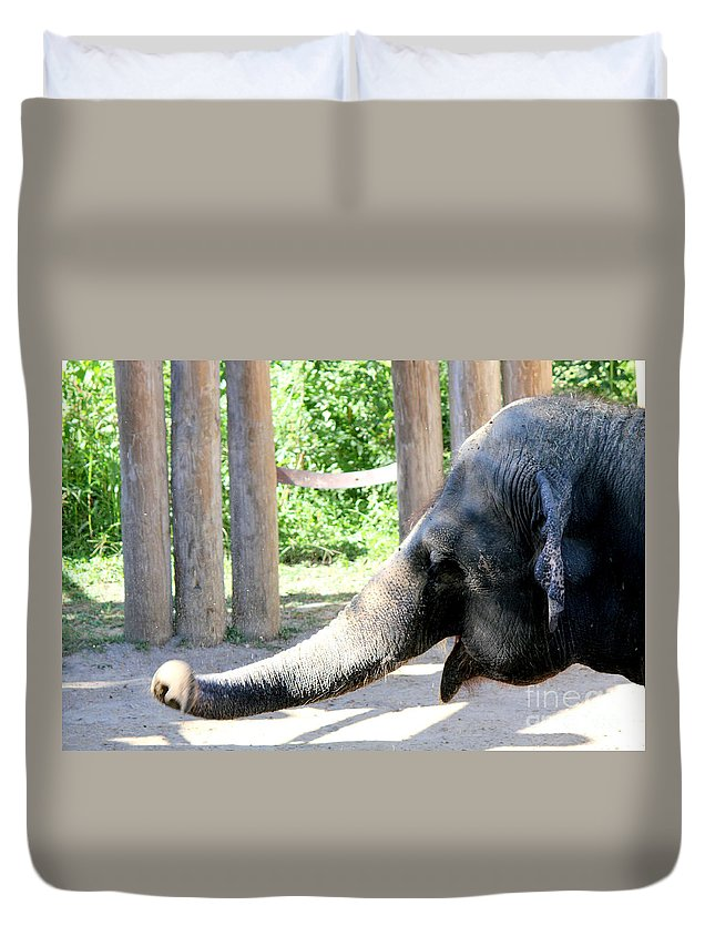 Elephant Duvet Cover featuring the photograph Happy Elephant by Kathy White