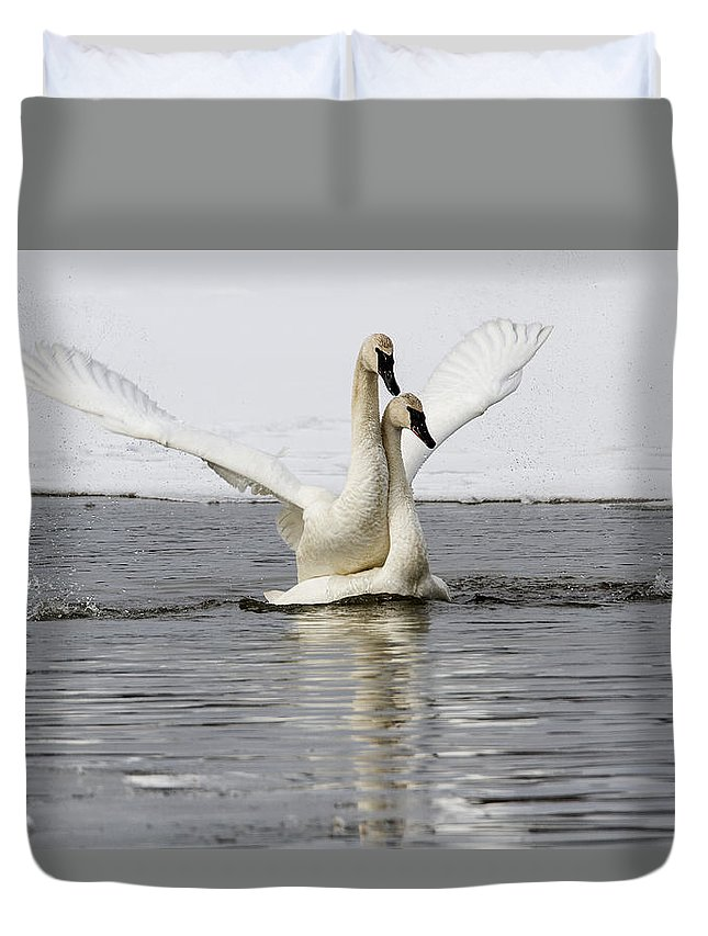Doug Lloyd Duvet Cover featuring the photograph Happy Happy by Doug Lloyd