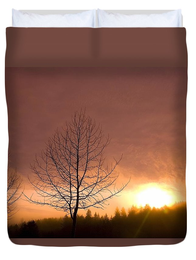 Bare Tree Duvet Cover featuring the photograph Happy Valley, Oregon, Usa by Craig Tuttle