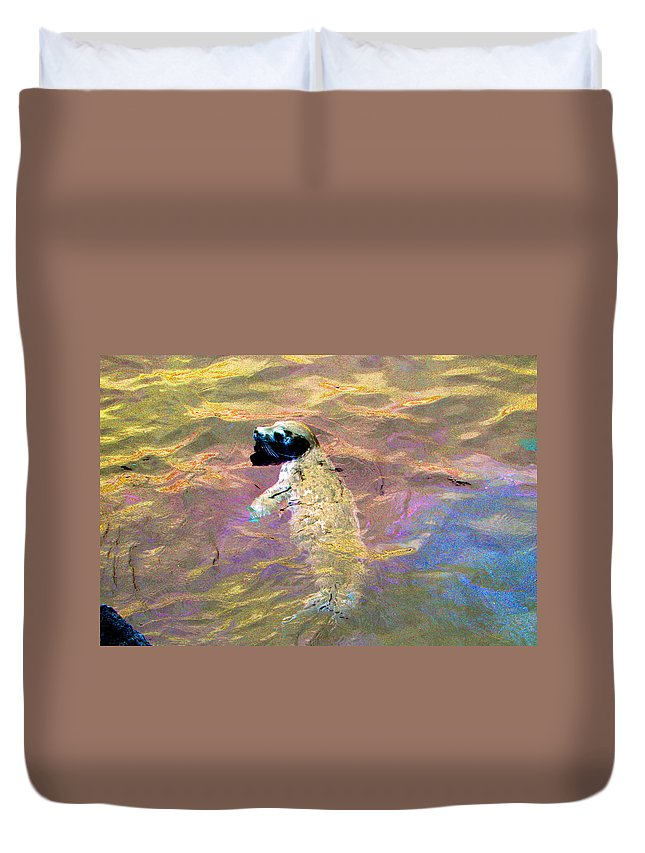 Seals Duvet Cover featuring the photograph Harbor Seal by Marie Jamieson