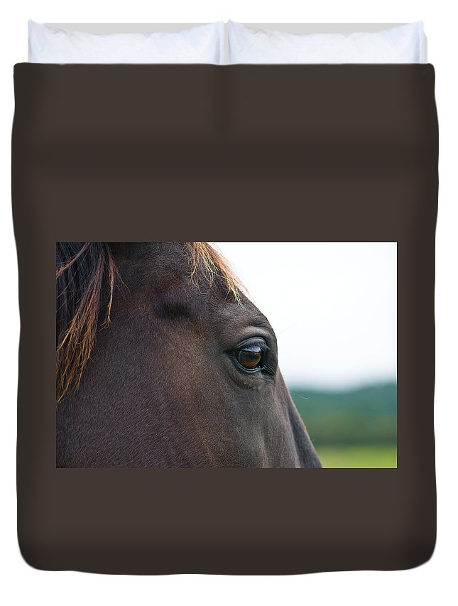 Animal Duvet Cover featuring the photograph Head Of A Wild Horse In The Wilderness by U Schade
