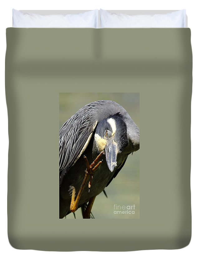 Animal Duvet Cover featuring the photograph Head Screwed On Wrong by Robert Frederick