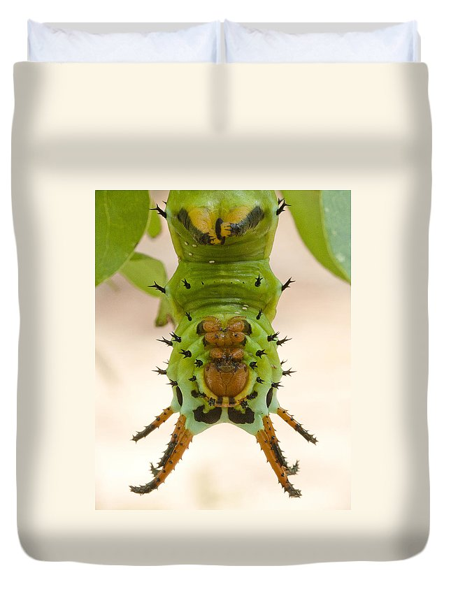 Hickory Horned Devil Caterpillar Duvet Cover For Sale By Bill Swindaman