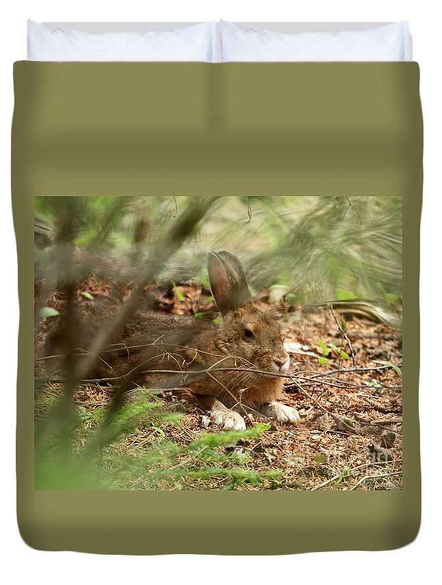 Hare Duvet Cover featuring the photograph Hidden Hare by Lloyd Alexander
