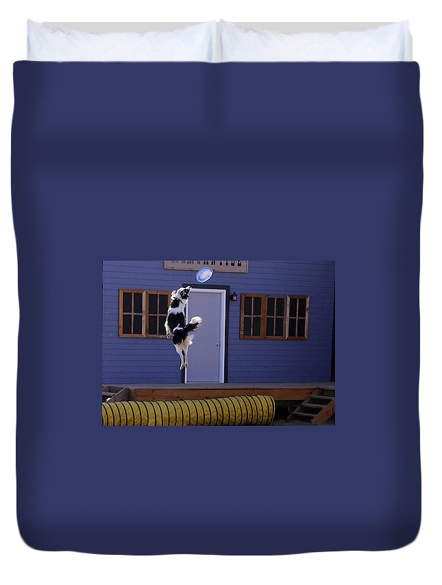 Dog Show And Tricks Duvet Cover featuring the photograph High Flying Catch by Elizabeth Winter