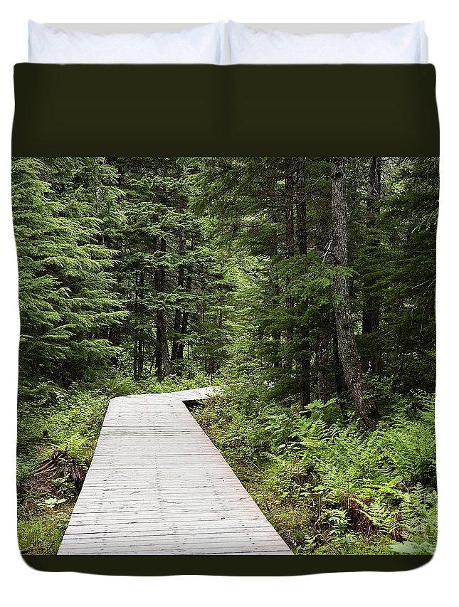Alaska Duvet Cover featuring the photograph Hiking Trail by John Greim