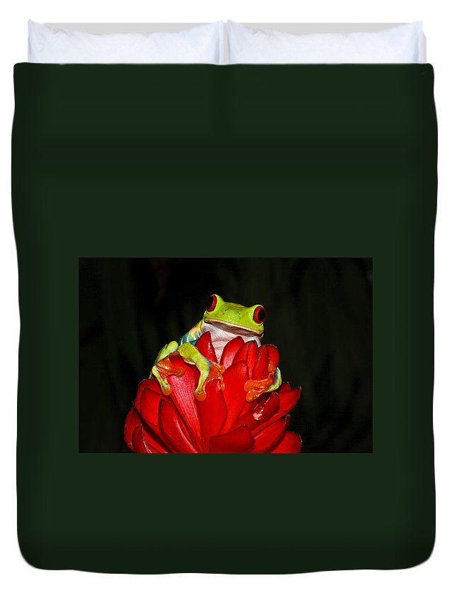 Frog Duvet Cover featuring the photograph Holding On by Tom and Pat Cory