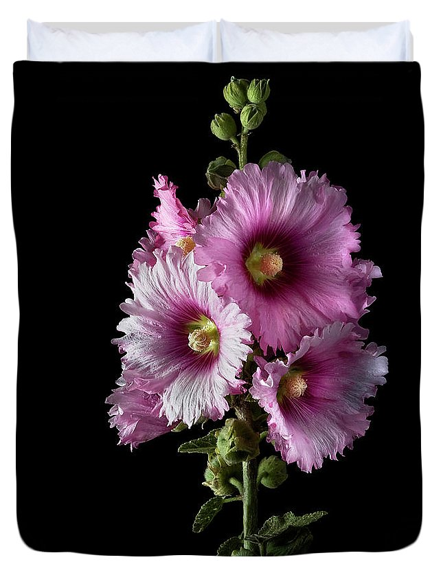 Flower Duvet Cover featuring the photograph Hollyhock by Endre Balogh