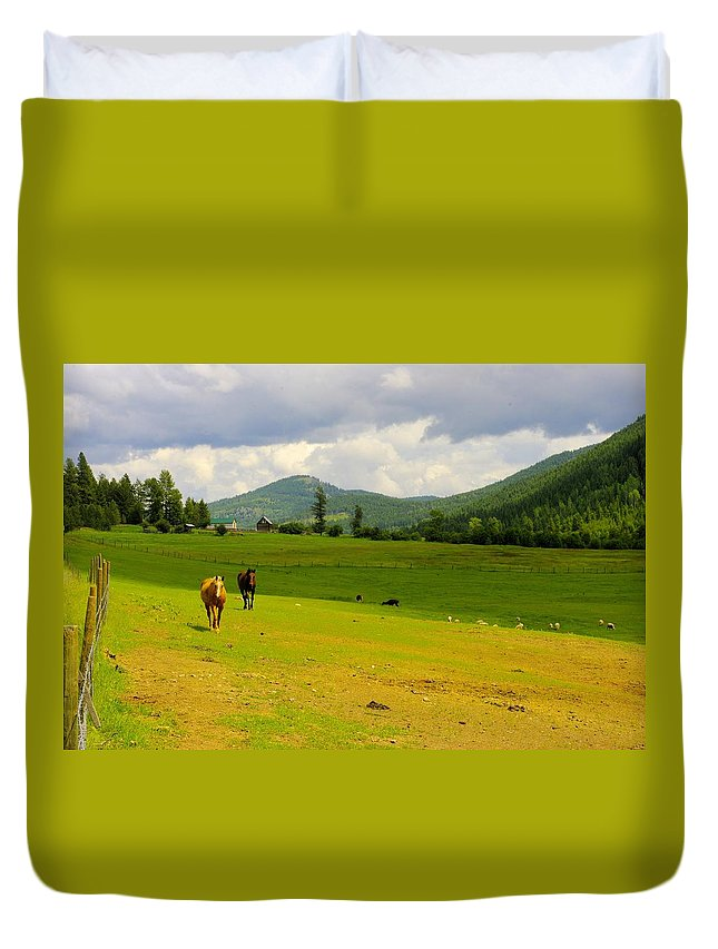 Greenwood Duvet Cover featuring the photograph Horse Heaven by John Greaves