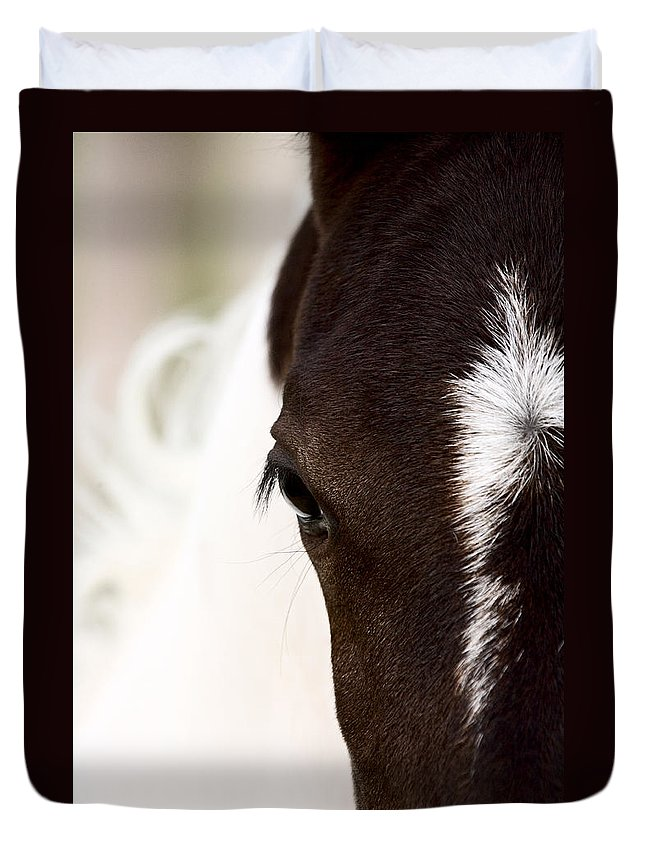 Animal Duvet Cover featuring the photograph Horse Mare Saskatchewan Field by Mark Duffy