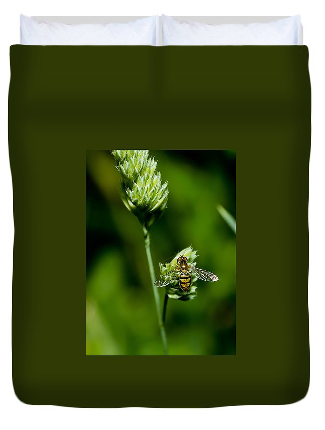 Macro Duvet Cover featuring the photograph Hoverfly On Grass by Lori Coleman