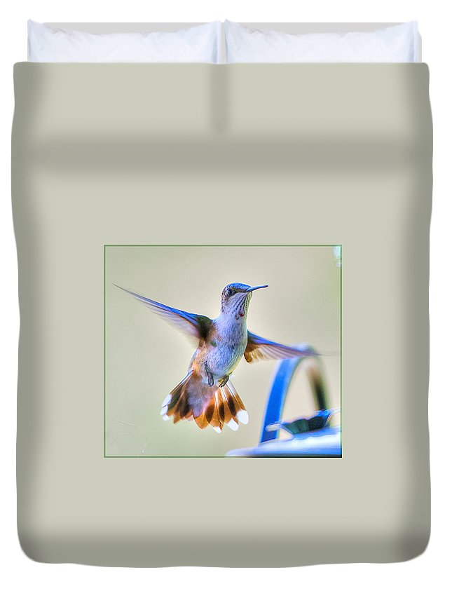 Bird Duvet Cover featuring the photograph Hummingbird At The Feeder by Shirley Tinkham