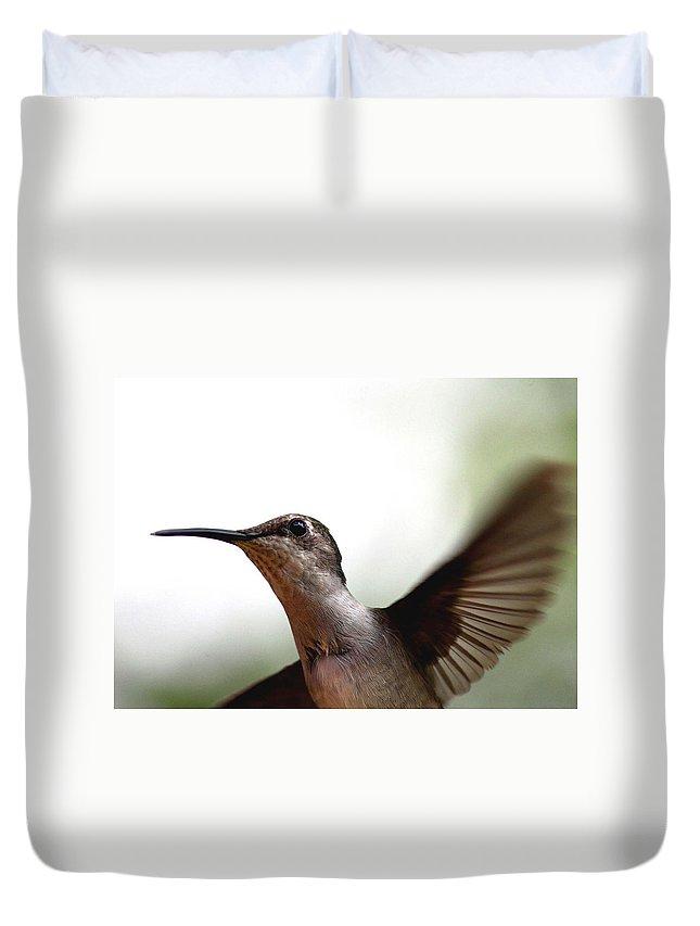 Hummingbird Duvet Cover featuring the photograph Hummingbird - Closeup by Travis Truelove