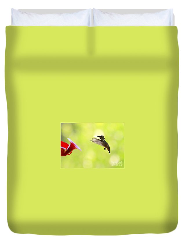 Hummingbird Duvet Cover featuring the photograph Hungry Hummer by Carol Groenen