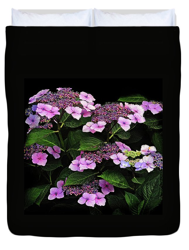 Hydrangea Duvet Cover featuring the photograph Hydrangea by Dave Mills