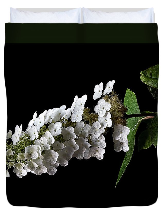 Flower Duvet Cover featuring the photograph Hydrangea by Endre Balogh
