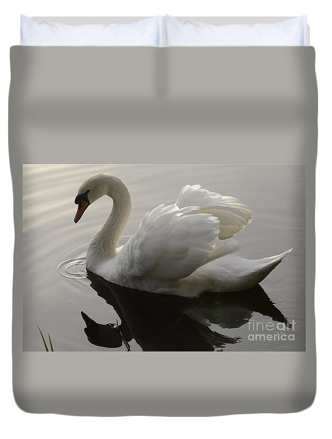 Swan Duvet Cover featuring the photograph I Am Too Sexy For My Feathers by Bob Christopher