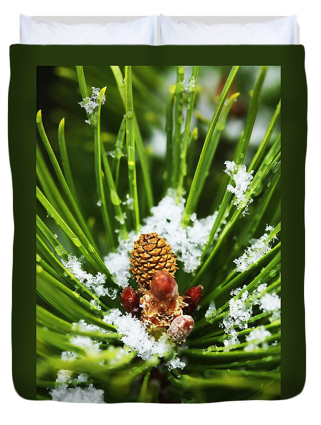 Ice Duvet Cover featuring the photograph Icy Pine 1 by Marilyn Hunt