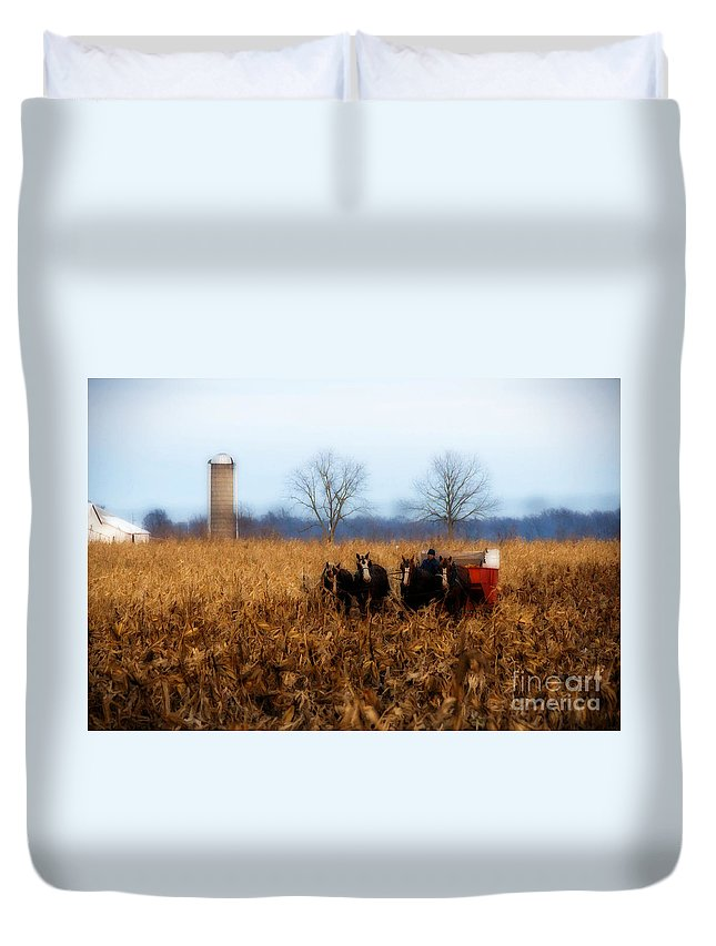 Amish Duvet Cover featuring the photograph In The Corn 1 by David Arment