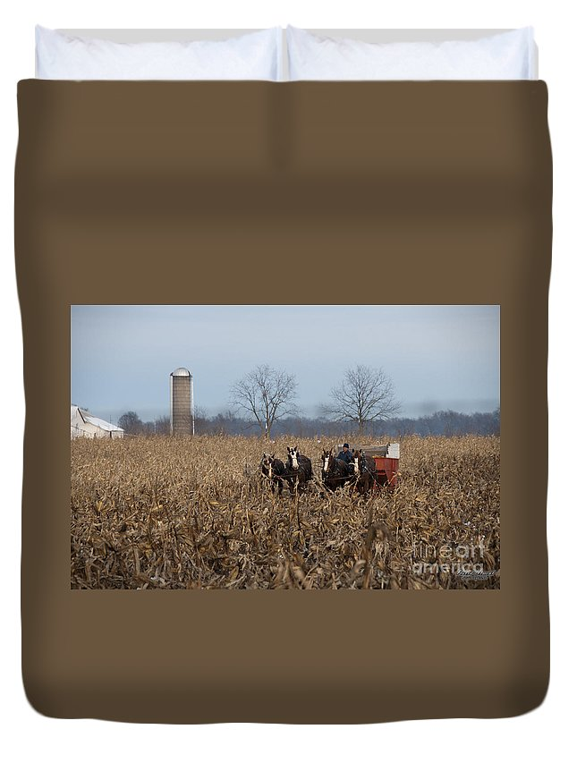 Amish Duvet Cover featuring the photograph In The Corn 2 by David Arment