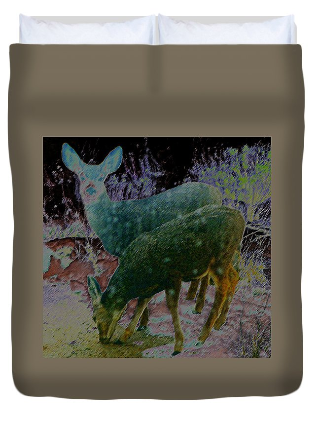 Abstract Duvet Cover featuring the photograph Interpretation Of Fawns by Lenore Senior