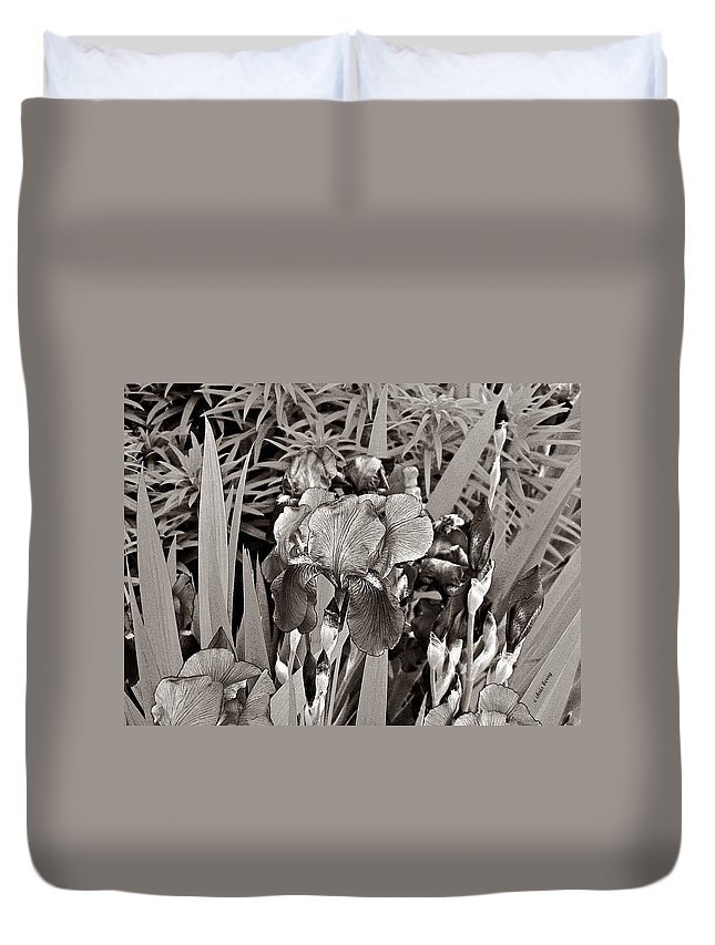Nature Duvet Cover featuring the photograph Iris Enhanced With Pencil by Chris Berry