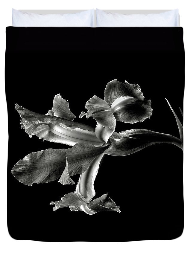 Flower Duvet Cover featuring the photograph Iris In Black And White by Endre Balogh