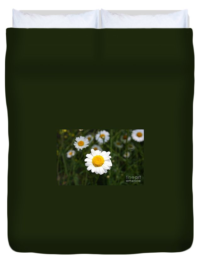 Daisy Duvet Cover featuring the photograph Isn't That A Daisy by Tony Cooper