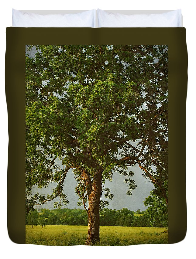 Trees Duvet Cover featuring the photograph It Should Be Easy by Laurie Search