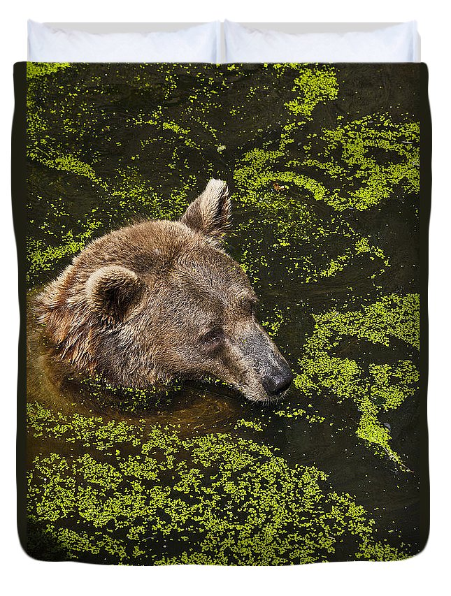 Nature Duvet Cover featuring the photograph It's Cool In Here by Heiko Koehrer-Wagner
