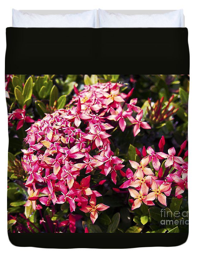 Fine Art Photography Duvet Cover featuring the photograph Ixora by Patricia Griffin Brett